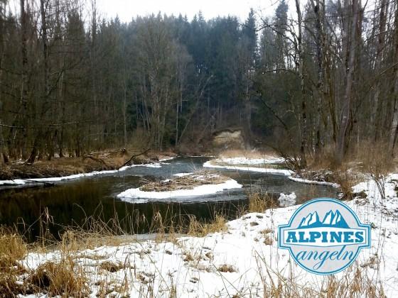 ...Anfang März: da war es den Fischen wohl noch ein bisschen zu kalt...