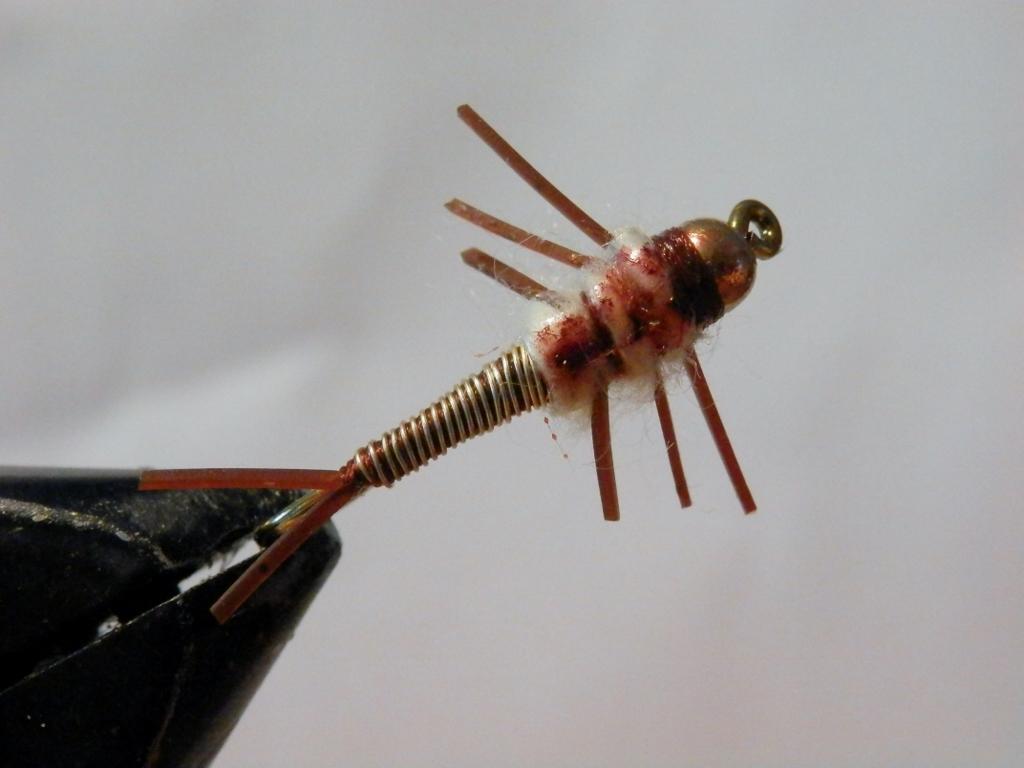 Cooper Stonefly