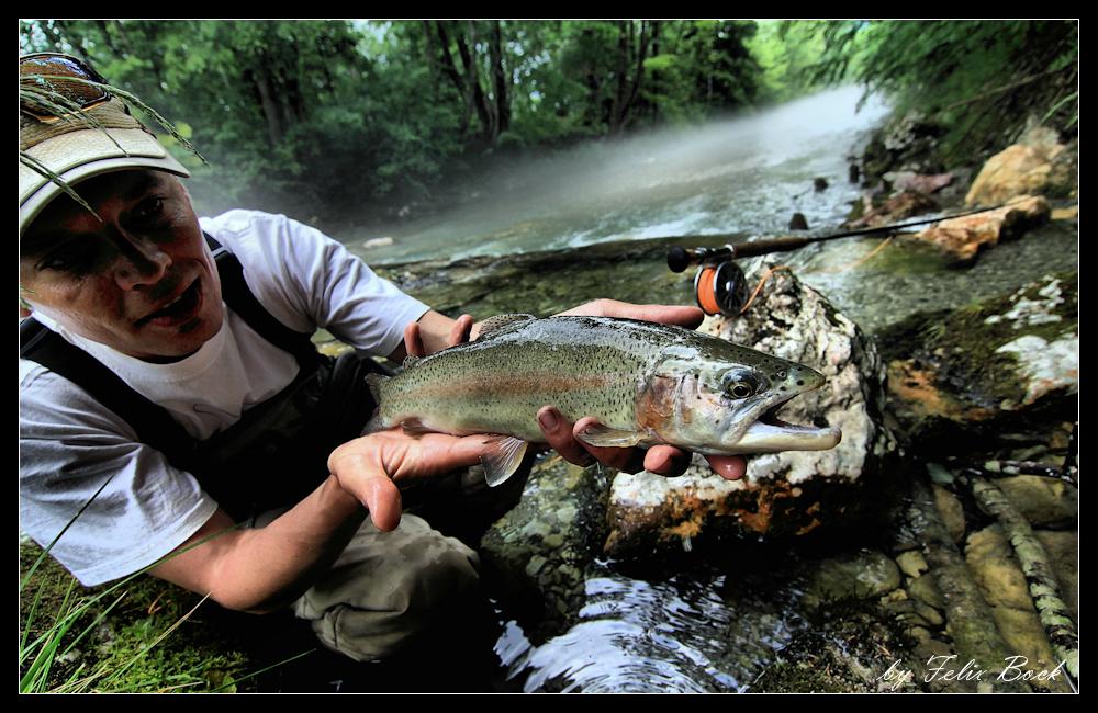 big_trout_pic_10