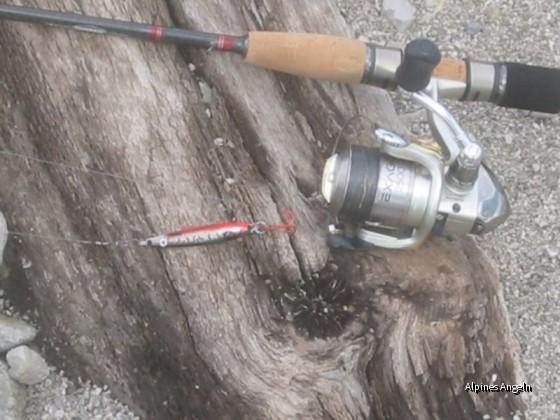 Seeforellenjagd am Walchensee