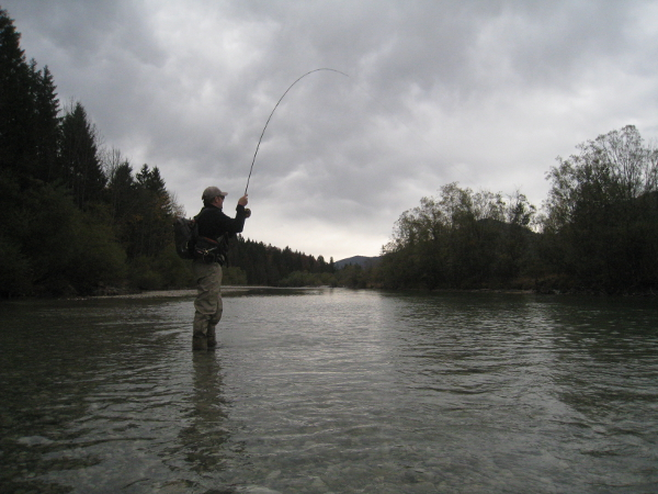 On the fly - Isar