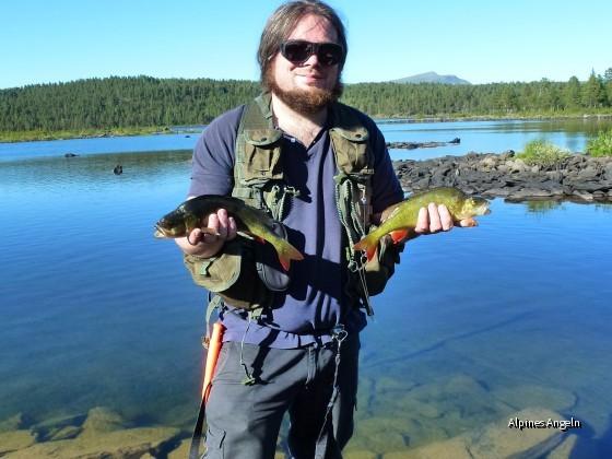 Schwedische Streamerbarsche ( Wooly Bugger rockt einfach)