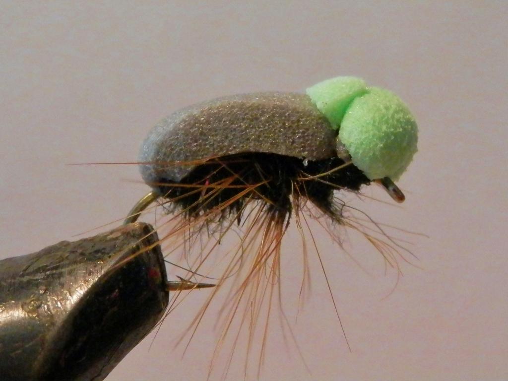 Beetle Foam