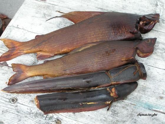 Zwei Saalachäschen und zwei halbe Aale aus dem Wallersee