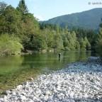 Naturbelassene Flusslandschaft an der Sava