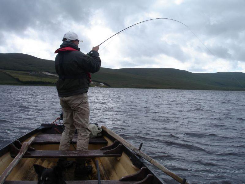 Irland 2008