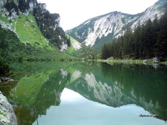 Soinsee 2009-07-24