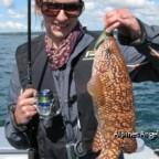 Lippfisch_Normandie 2011_01