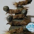 peeping caddis