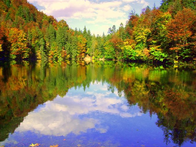 Herbstimpressionen Hechtsee